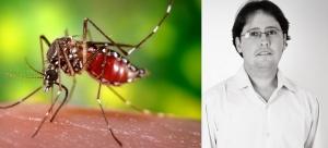 Aedes Domestico