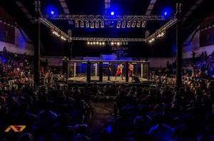 Batalha de MMA